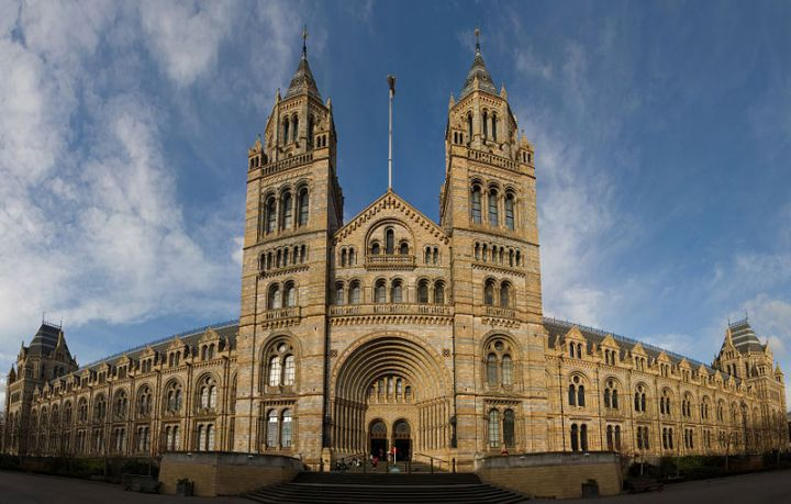 Музей естественной истории в Лондоне