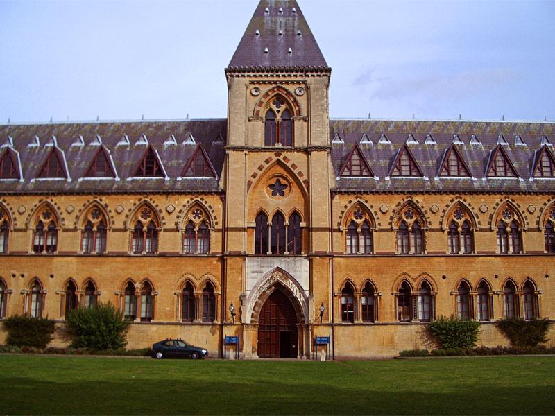 Университетский музей