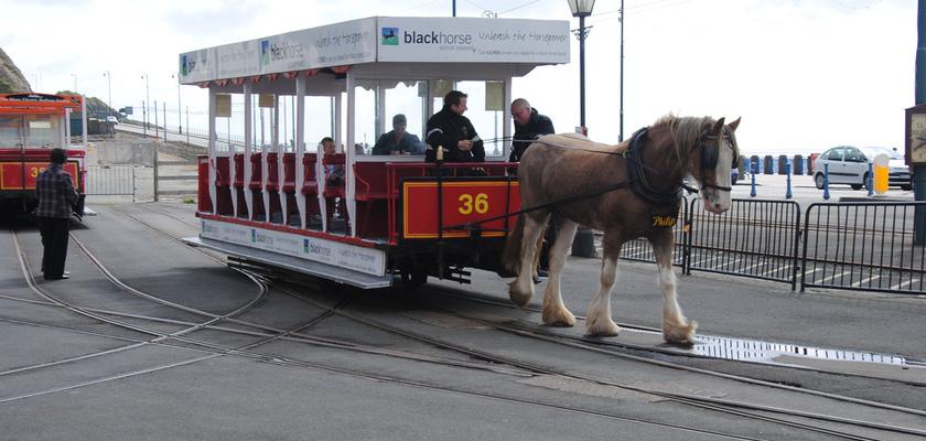 Дугласский конный трамвай