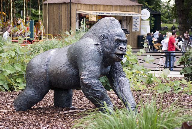Царство гориллы